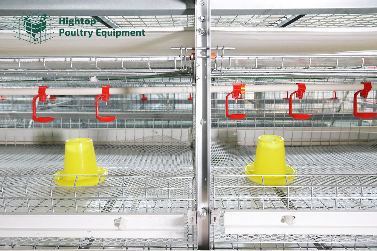 automatic feeders for chickens