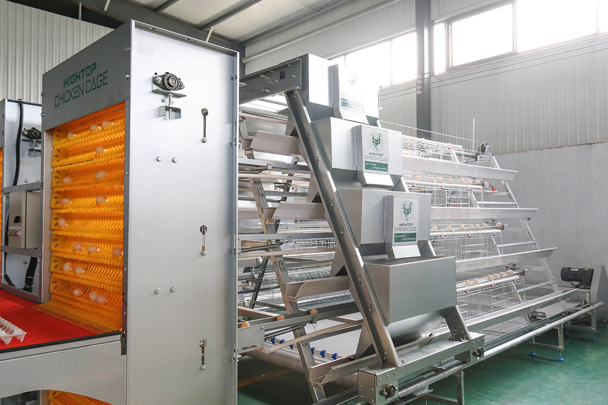 poultry battery cage system