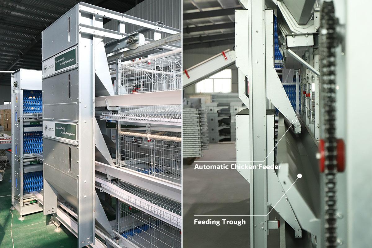 automatic chicken feeder system