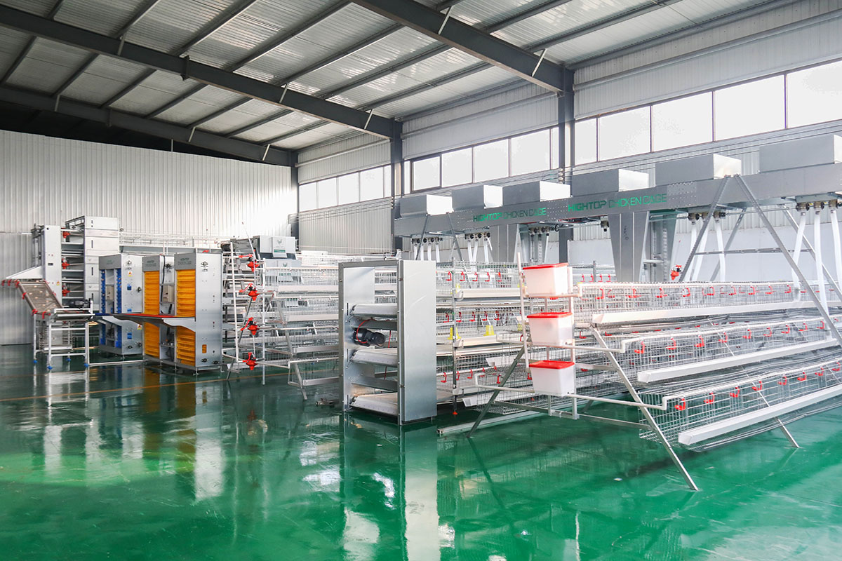chicken battery cage system for poultry