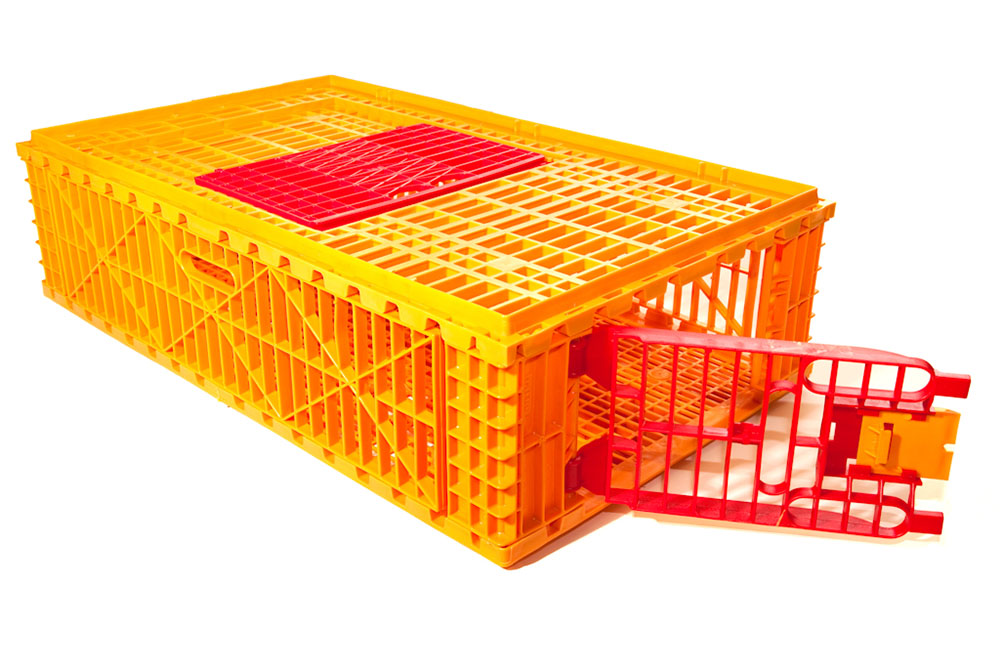 plastic chicken transport cages