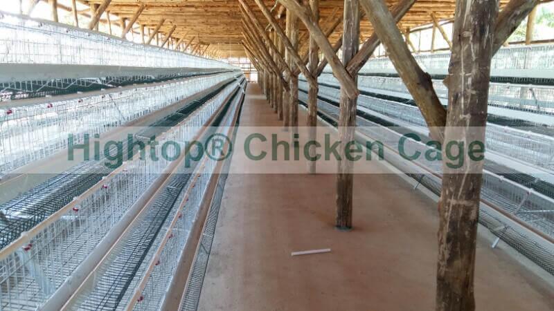 poultry farming project in Uganda