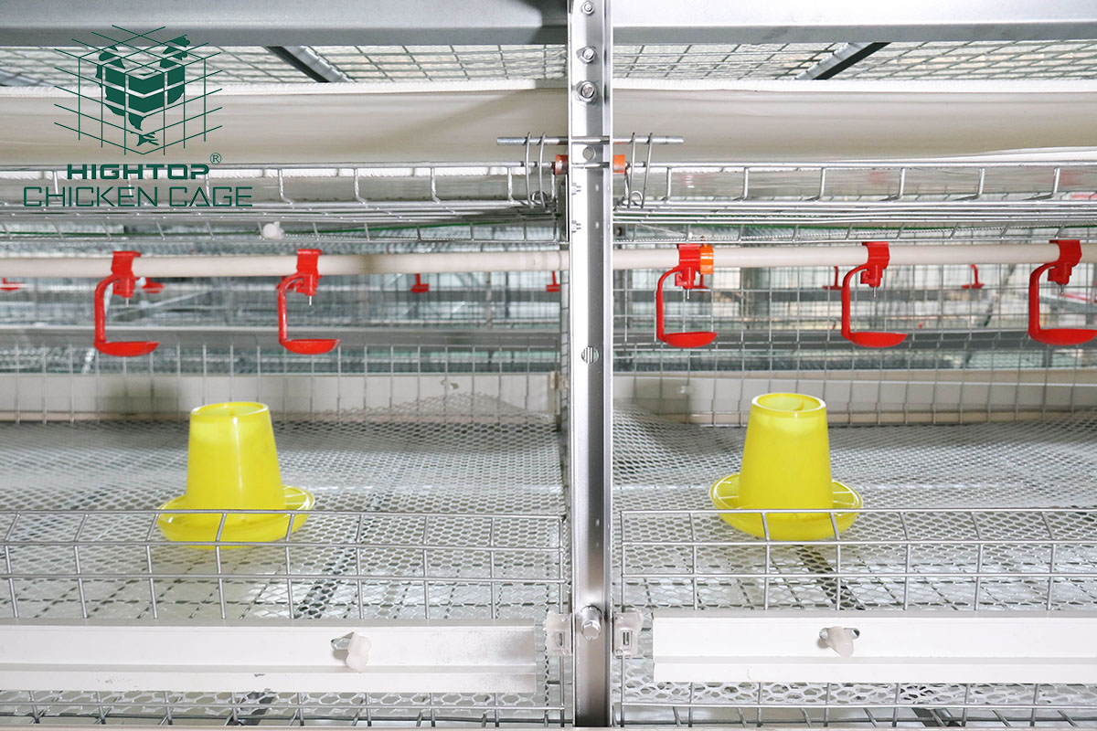 battery cage for broilers