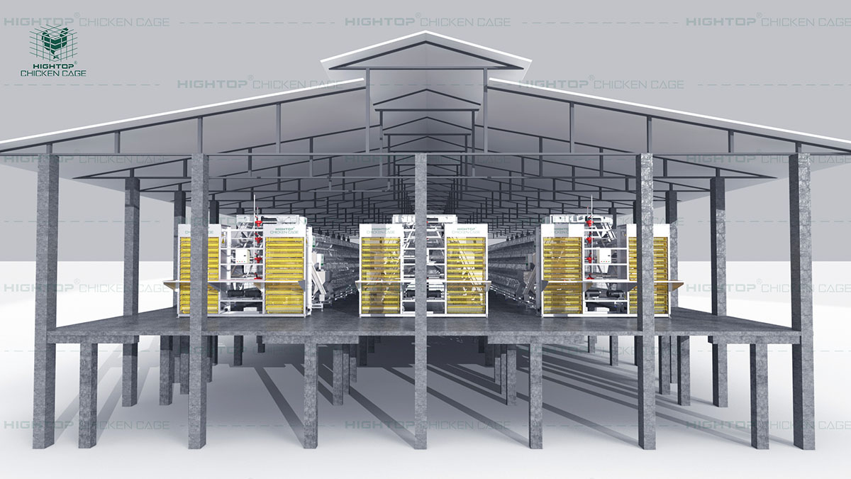 chicken poultry house design for layers and broiler