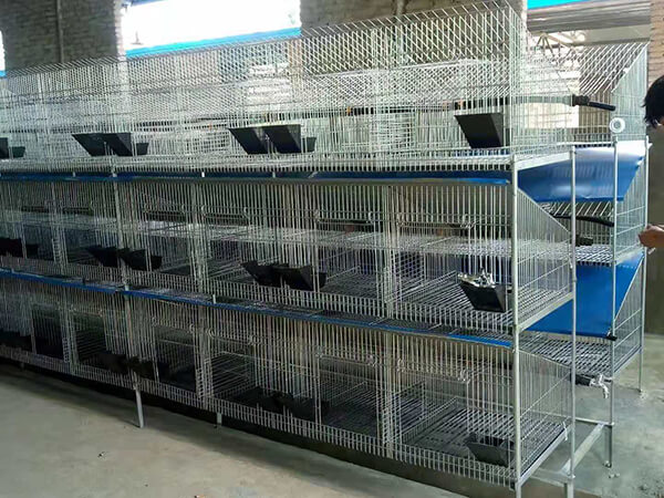 rabbit farming cages 3 tier rabbit cage Commercial Rabbit Cages