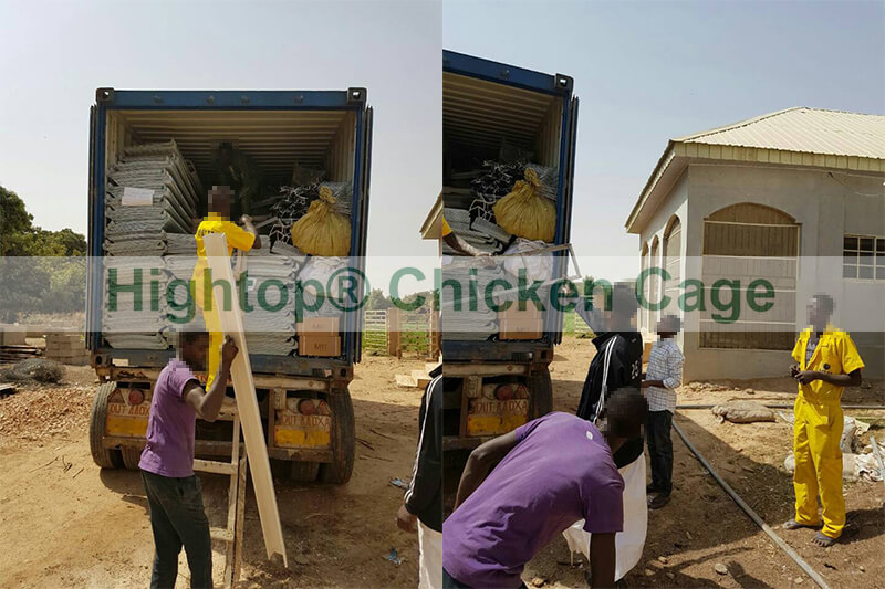 Chicken Cage in Nigeria