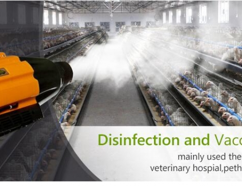 Portable Disinfection Sprayer (Disinfectant Fogging Machine) for Chicken Farm