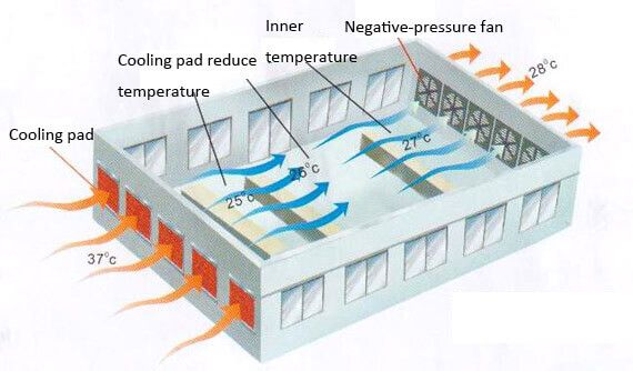 Cooling pad reduces temperature