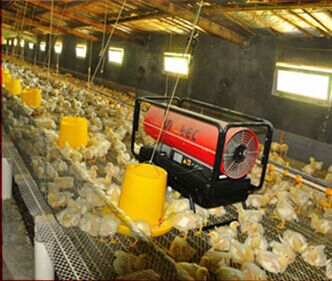 Poultry Brooder Heat Light Infrared Heat Lamp Diesel