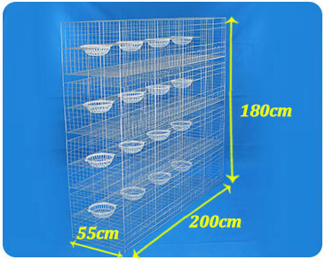 Dove cage size