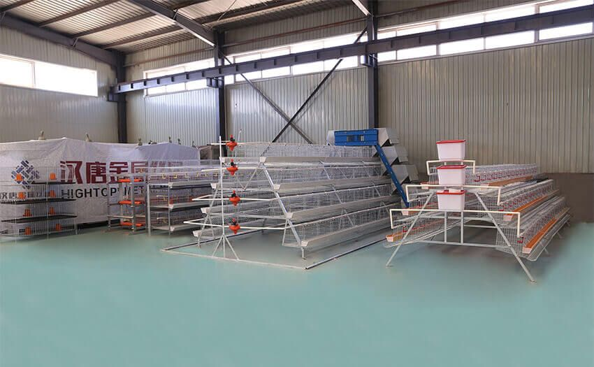 Hightop Battery Cage Sample Center