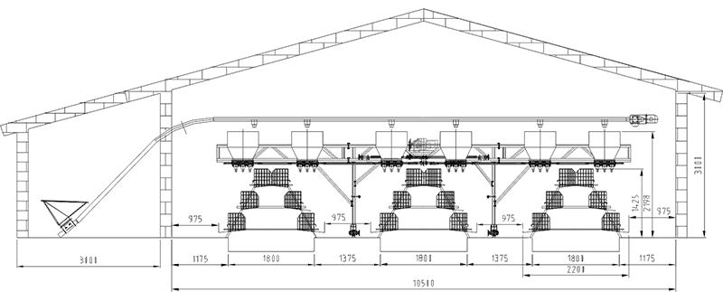 Poultry farm layout design
