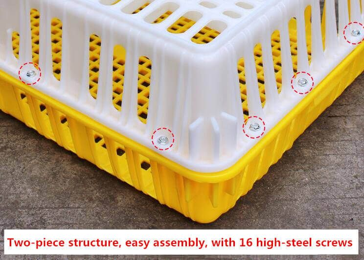 Plastic Poultry Transport Crates