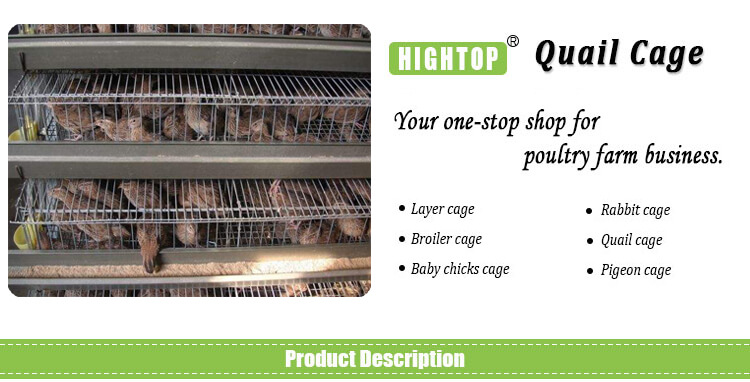 cheap quail battery cages