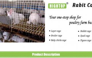 cheap rabbit cages