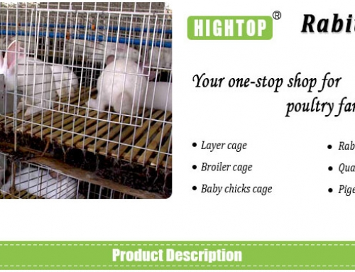 Commercial Rabbit Cages for Rabbit Farming