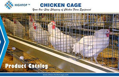 chicken cage catalogue