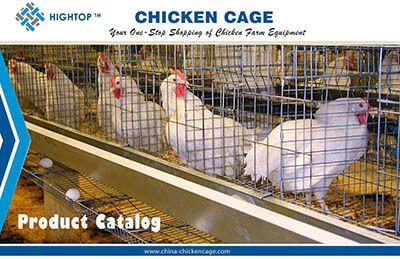 chicken cage catalogue