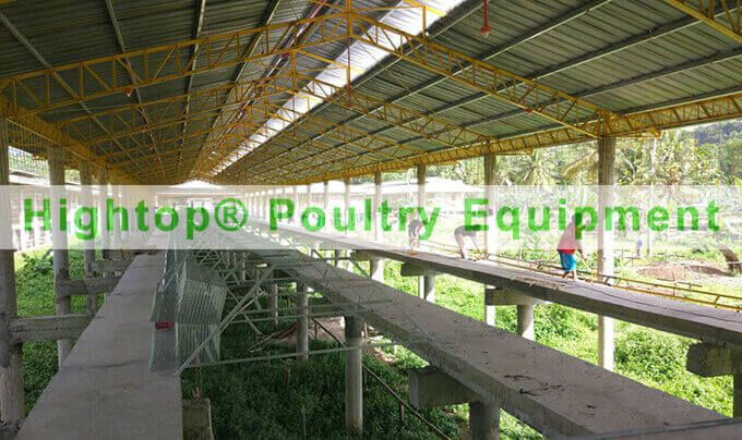 chicken farm in Philippines