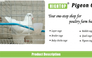 dove cage Pigeon Breeding Cages