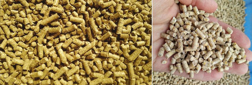 pellet feed