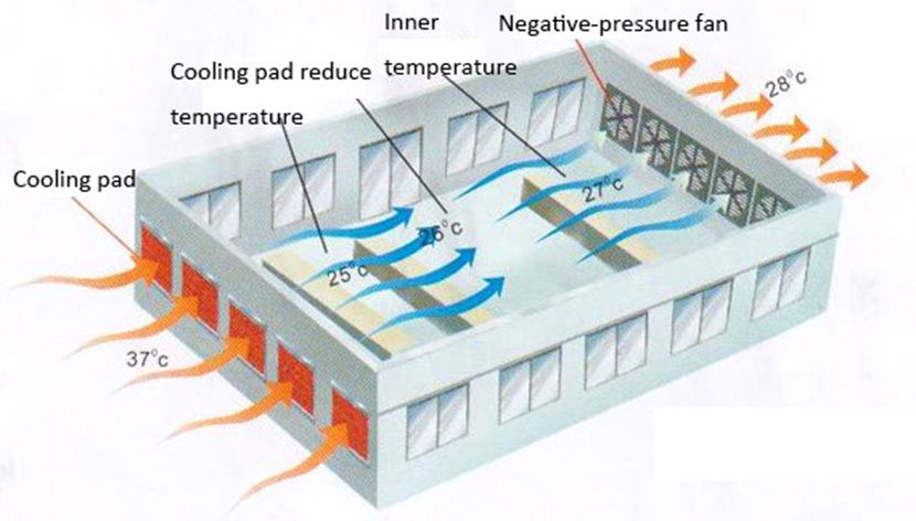 chicken farm ventilating system