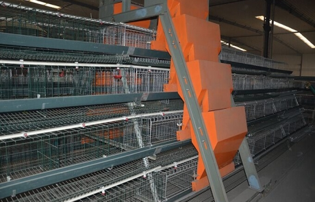 ladder automatic feeding machine type