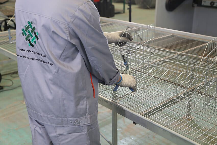Worker is packing the battery cage