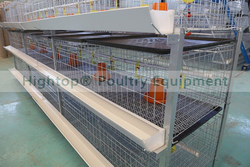normal h type broiler cage