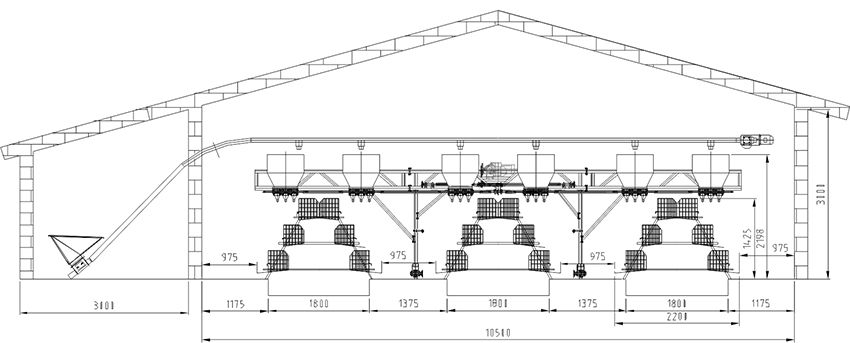 poultry house layout design