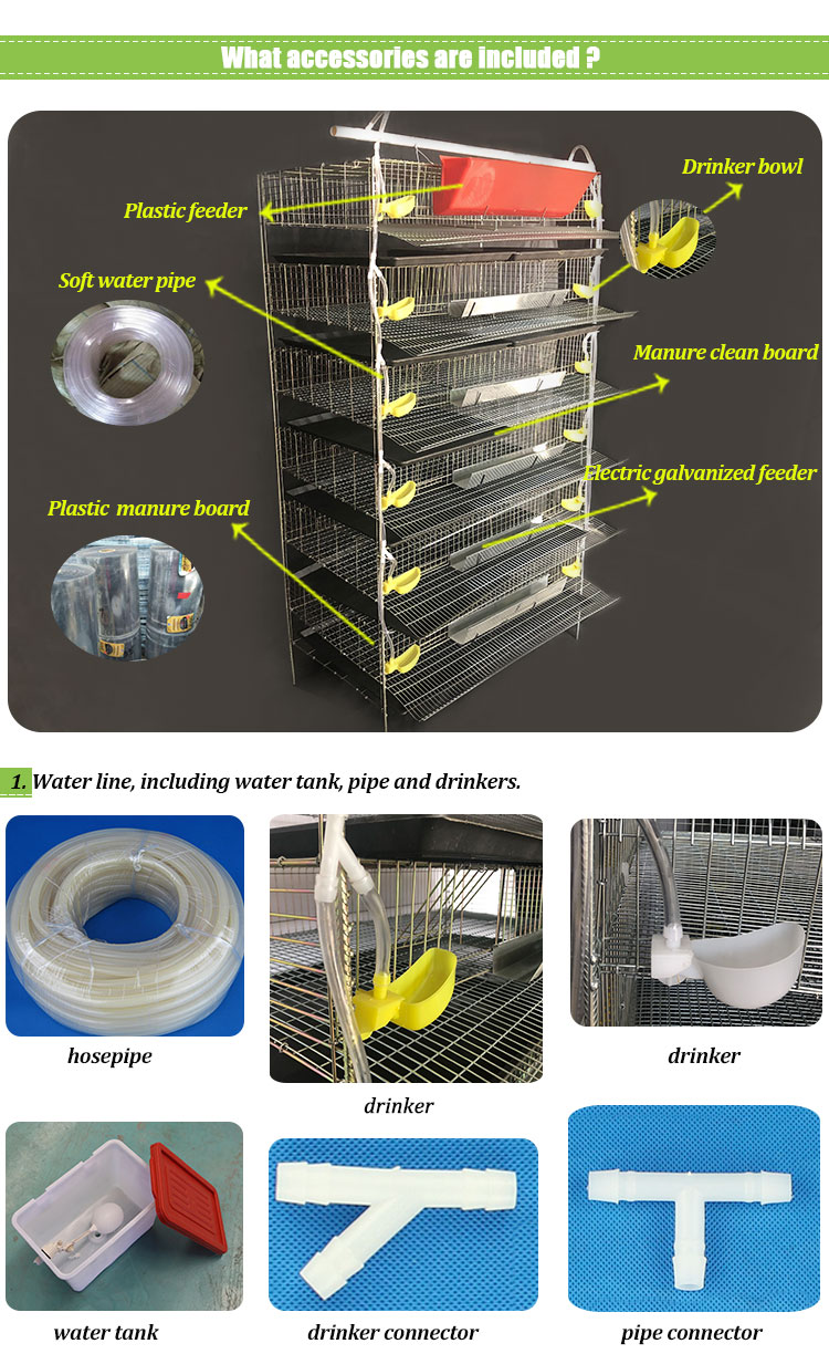 quail farming cages accessories