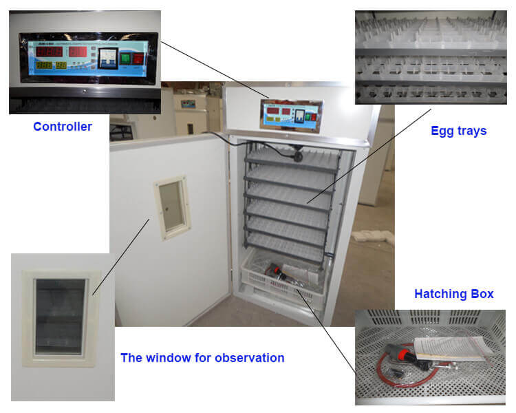 egg hatching incubator